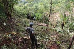 vorbereitung_pflanzung_bäume