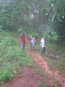 Unsere Mitarbeiter beim Transport von Setzlingen über Matschwege im Regenwald.