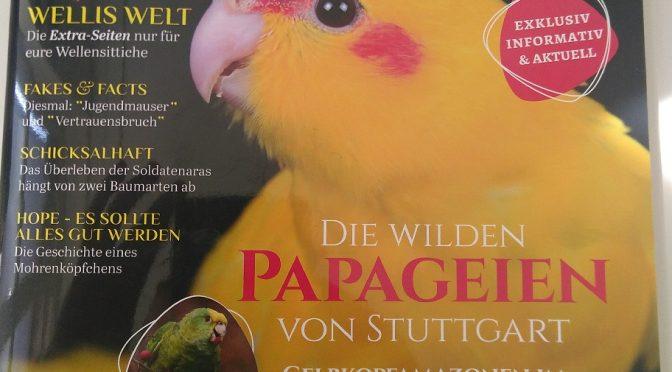 Neuer Wald für Papageien in Costa Rica